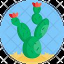 Cactus Cacti Flower Icon