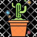 Cactus Cactus Pot Cacti Icon