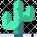 Cactus Cacti Desert Icon
