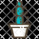 Cactus cactus Icon