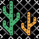 Cactus Cactus Plant Desert Cactus Icon