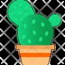 Cactus Bowl Grow Green Icon