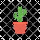Cactus Plant Cactus Plant Icon