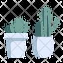 Cactus Plant Decoration Icon