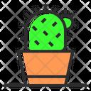 Cactus Pot Cactus Plant Icon