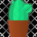 Cactus Pot Botanic Cactus Cactus Icon
