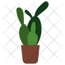 Cactus Potted Plant Icon