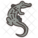 Caiman Crocodile Alligator Icon