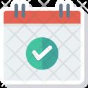 Calendar Check Date Icon