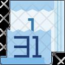 Calendar New Year Date Icon