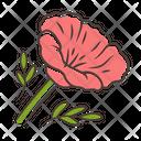 California Poppy Papaver Icon