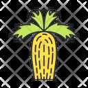 California Fan Palm Icon
