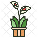 Calla Lily Lily Flower Icon