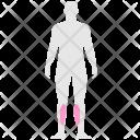 Calves Icon
