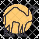 Camel Desert Animal Icon