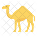 Camel Animal Zoo Icon