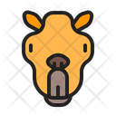 Camel Animal Mammals Icon