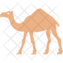 Camel Desert Zoo Icon