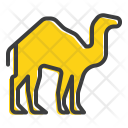 Camel Desert Animal Icon