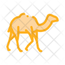 Camel Desert Sandy Icon