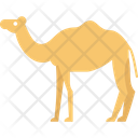 Camel Forest Mammal Icon