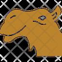 V Camel Bactrian Camel Animal Icon