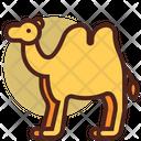 Camel Pet Animal Icon
