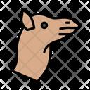 Camel Face Zoo Icon