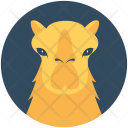 Camel Bactrian Animal Icon