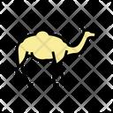 Camel Animal Color Icon