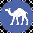 Camel Desert Camel Gulf Animal Icon