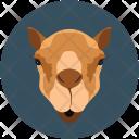 Camel Sand Animal Icon