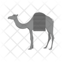 Camel Animal Wildlife Icon