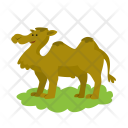 Camel Animal Icon