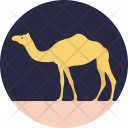 Camel Mammal Animal Icon