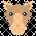 Camel Face Icon