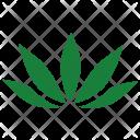 Canabis Icon