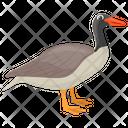 Canadian Goose Sparkling Goose Wild Goose Icon