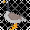 Canadian Goose Goose Decoys Sparkling Goose Icon