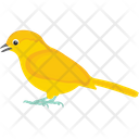 Australian Plainhead Canary Chickadee Icon