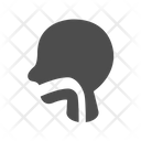 Cancer Head Neck Icon