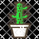 Candelabra cactus Icon