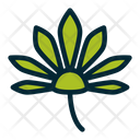 Leaf Cannabis Marijuana Leaf Icon