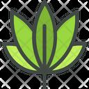 Cannabis Marijuana Leaf Icon
