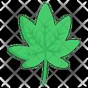 Leaf Weed Leaf Cannabis Icon