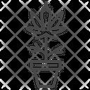 Cannabis plant Icon