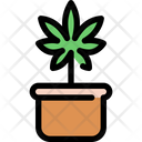 Cannabis Marijuana Medical Icon