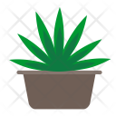 Cannabis Home Plant Icon