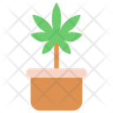 Cannabis Plant Pot Icon