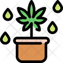 Pot Cannabis Marijuana Icon